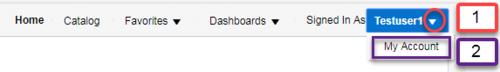 Screenshot illustrating My Account menu link. See accompanying narrative for description.