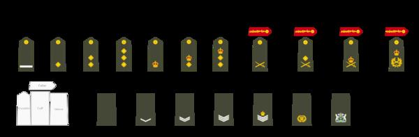NI army ranks.png